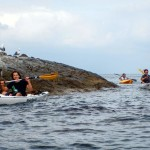 kayak, fun, divertimento, escursioni, liguria, italia, excursions