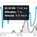 grafico velocità porzione xm top