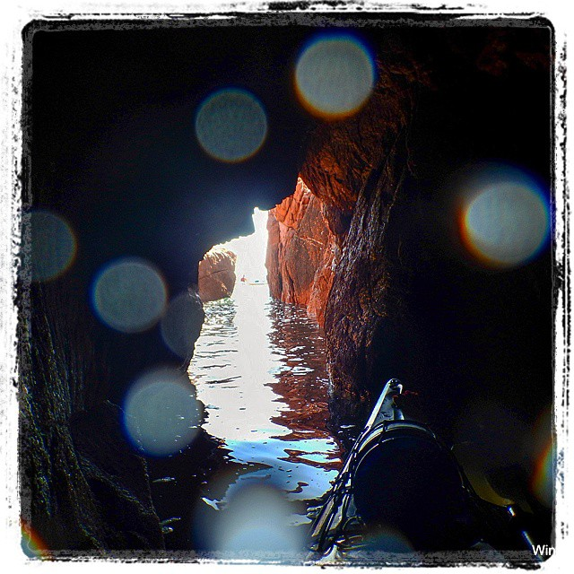 The thrill of exploring..has no limits :-)! #kayak #nature