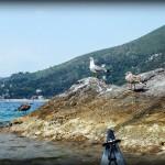 Escursione in Kayak a Bergeggi (Liguria) del 30 Giugno 2015 – Circa 5 Km. Kayak excursion in Bergeggi (Liguria) of June, 30,  2015 – About 5 Km.