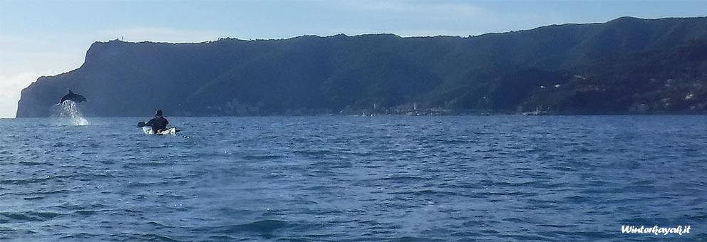 Inverno, quiete, poco traffico in mare... anche i delfini apprezzano!