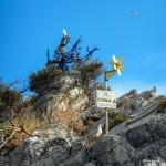 Cosa resta del Pifferaio dell'Isola di Bergeggi
