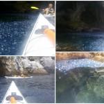 Escursione in kayak a Bergeggi (Liguria) del 5 Giugno 2016 – Circa 8 Km. Kayak excursion in Bergeggi (Liguria) of June, 05, 2016 – About 8 Km.