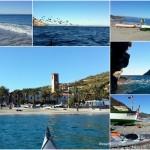 Doppia escursione in kayak in Area Marina Protetta Isola di Bergeggi (Liguria) e Noli del 12 Novembre 2016 – Circa 14 Km.